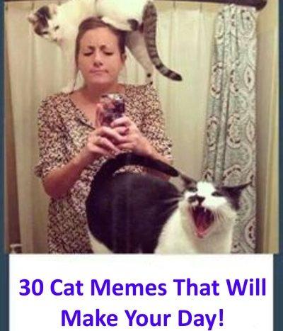 30-memes