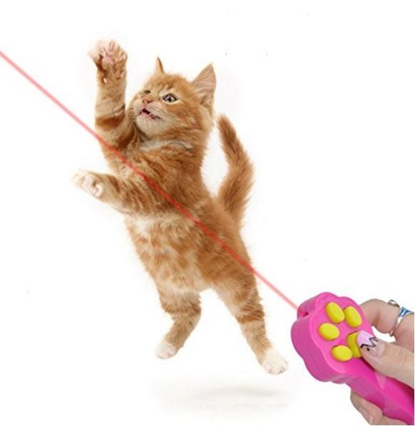 Make A Cat Wand