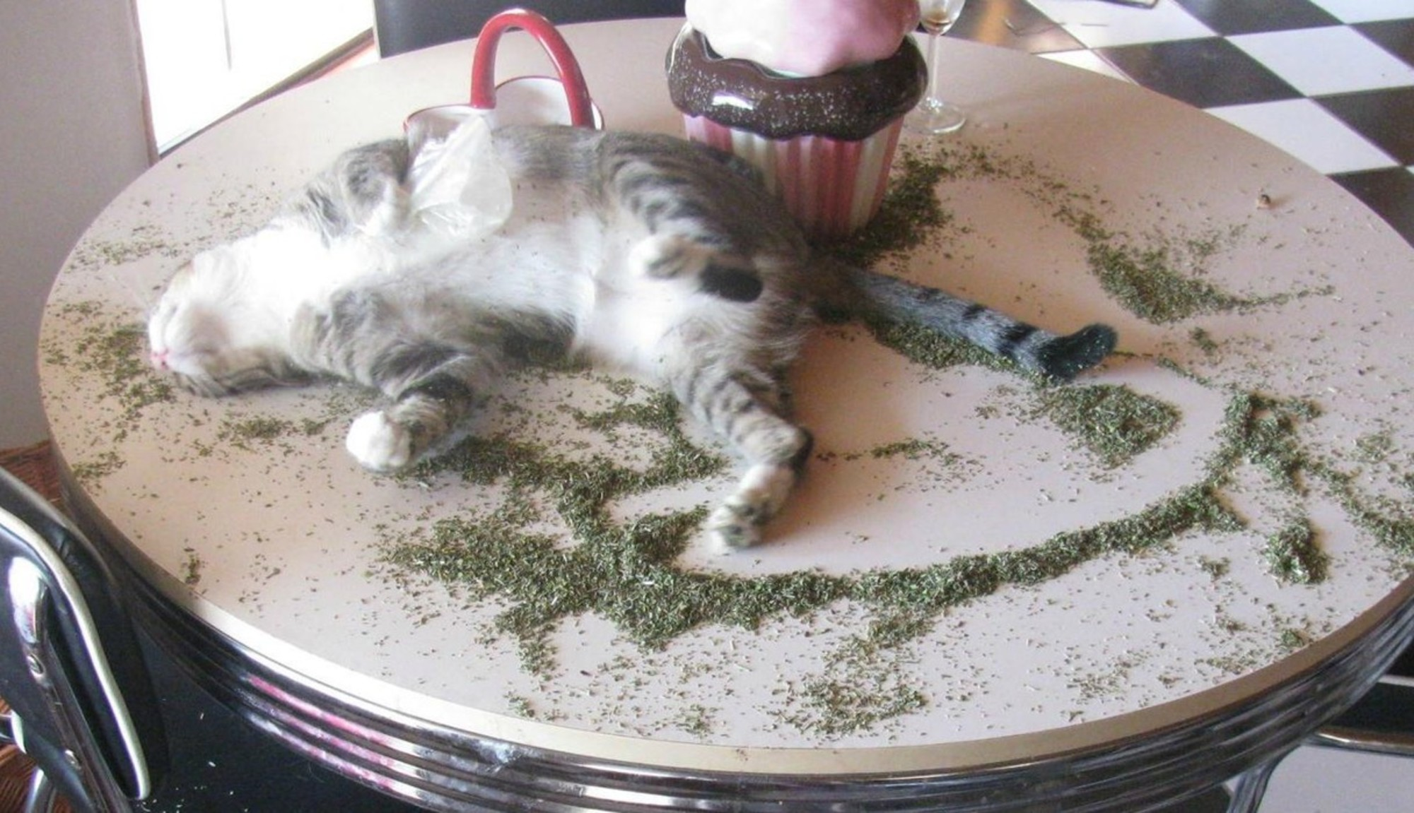 Rolling In The Nip