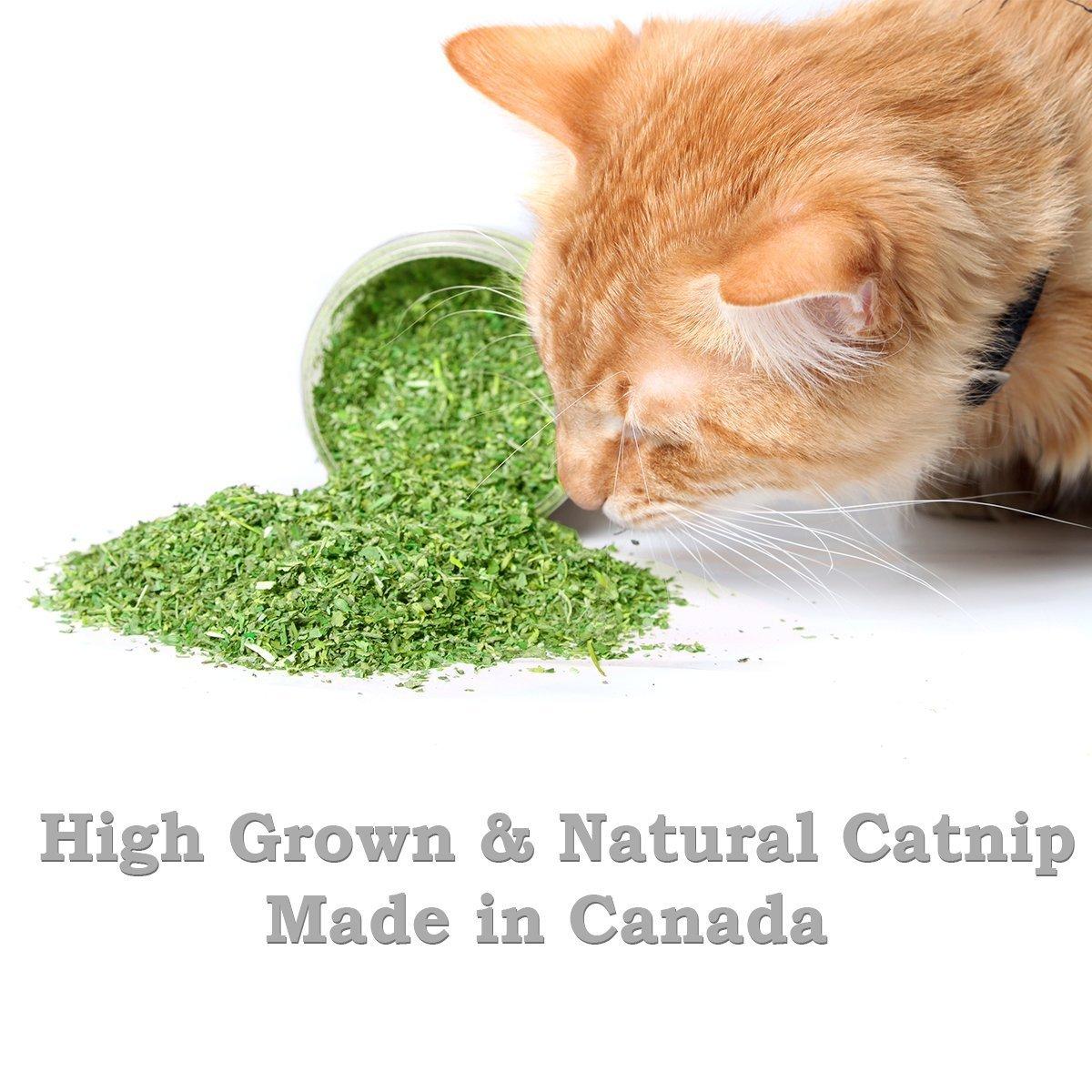 Pet Magasin Canadian-Grown Fine-Grind Catnip