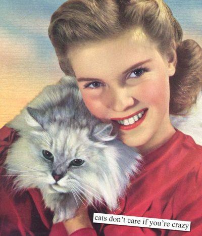 Dear Crazy Cat Lady