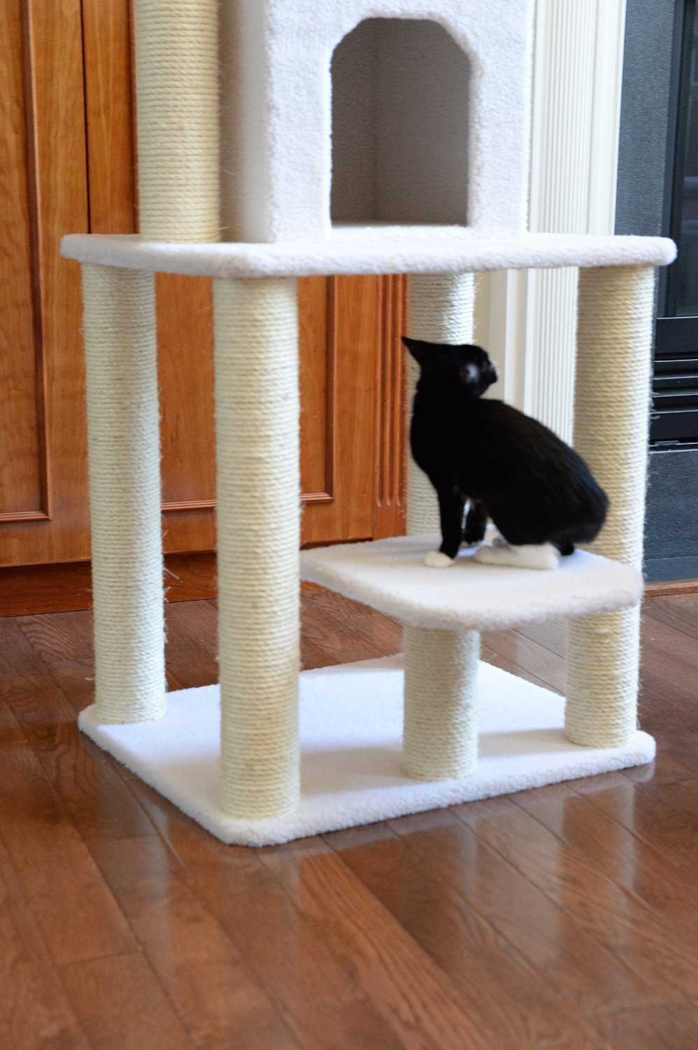Armarkat Cat Tree Furniture Condo, Height- 60-Inch To 70