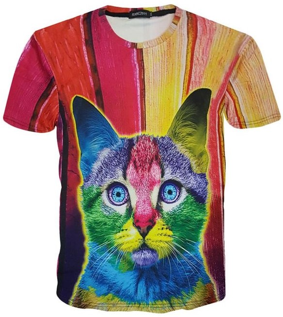 Rainbow Graffiti Kitty