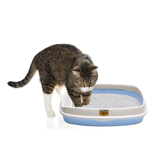 Pet Magasin Compact Scatter-Control Litter Box with Scoop